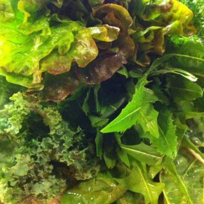 Nourishing Green Smoothie | stephgaudreau.com