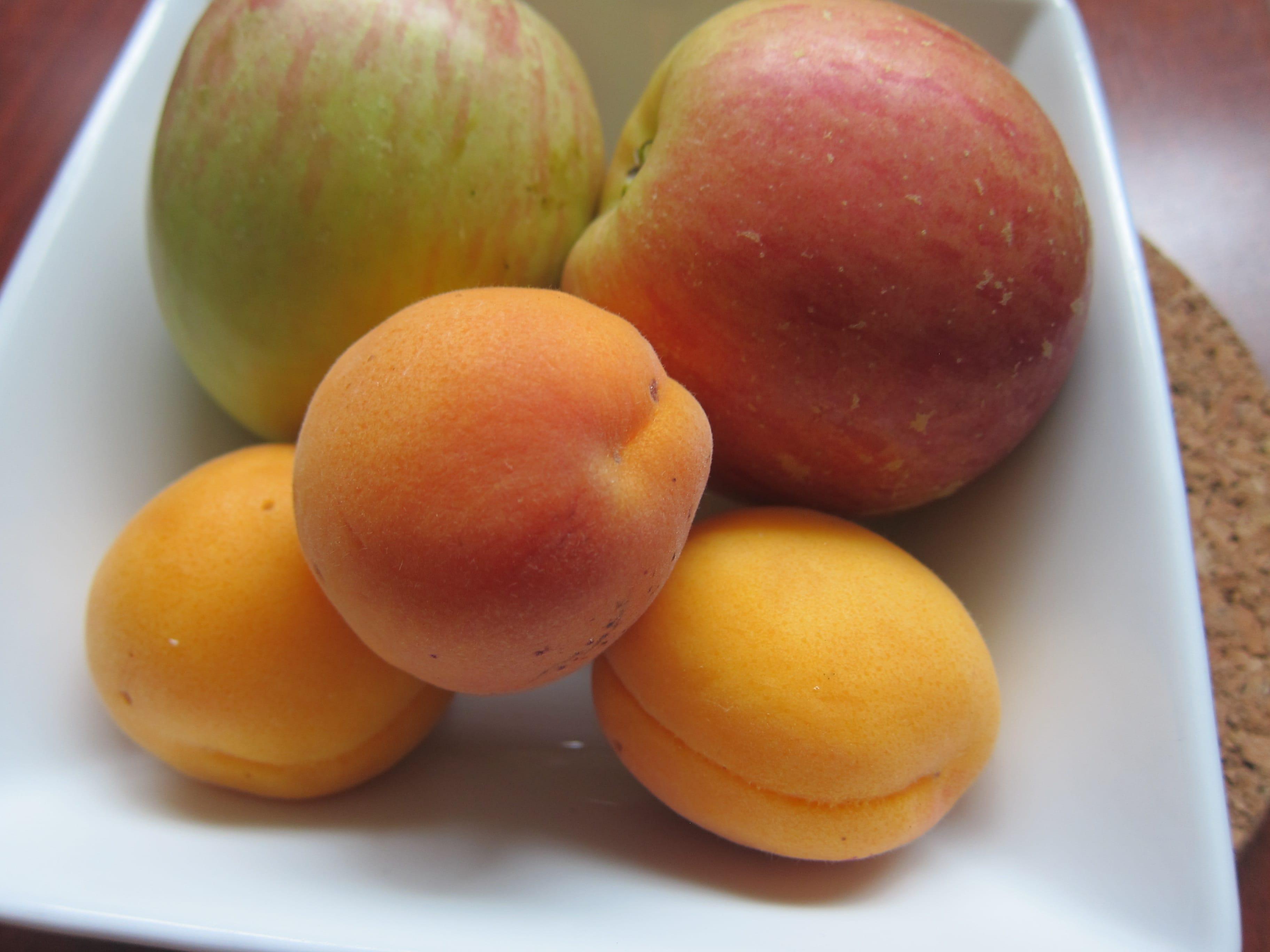 Apricot Ginger Applesauce | stephgaudreau.com