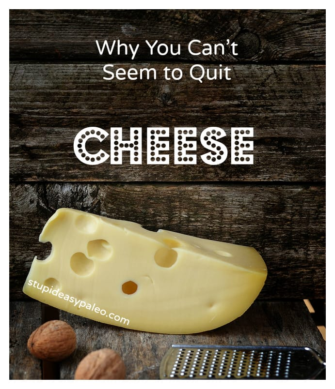 Cheese: Why You Can't Quit It – Steph Gaudreau