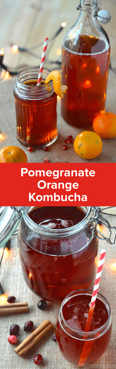 Holiday kombucha flavored with cranberry, orange, and pomegranate is perfect for this time of year. Learn how to make it yourself! | Stupideasypaleo.com