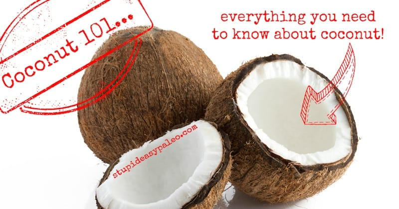 Coconut 101 | stephgaudreau.com