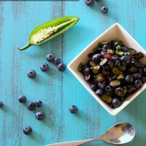 Blueberry Jalapeño Salsa | stephgaudreau.com
