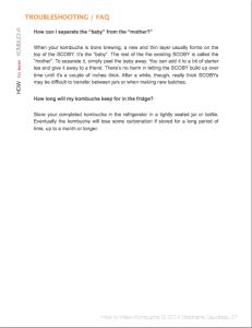 How To Make Kombucha Ebook | stupideasypaleo.com