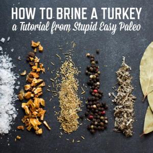 How To Brine a Turkey or Chicken | stephgaudreau.com