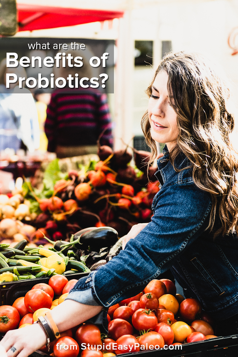 What are the Benefits of Probiotics? | StupidEasyPaleo.com